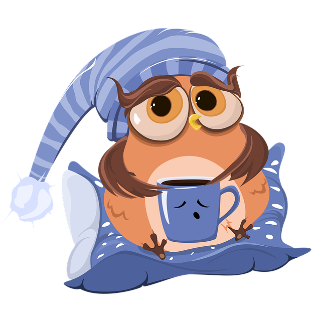 Coffee, Cup, Owl, Coffee Cup, Morning, Cartoon