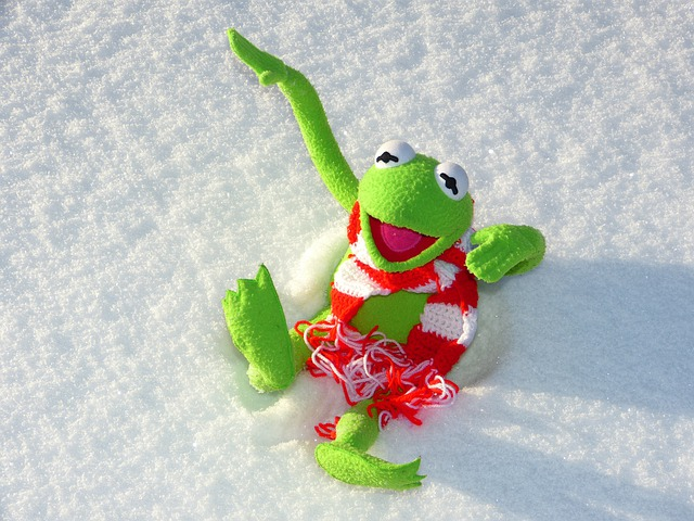 Kermit, Frog, Fun, Snow, Winter, Cold