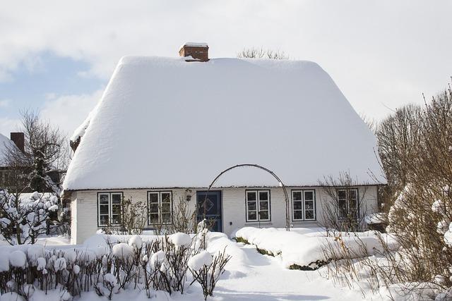 Winter, Snow, Cold, Frozen
