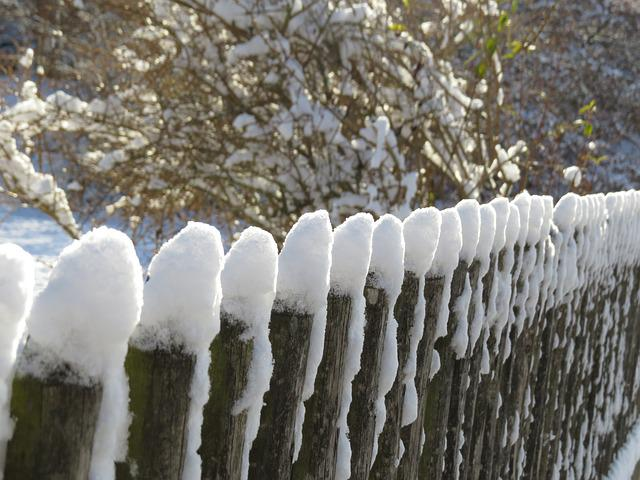 Winter, Snow, Frost, Nature, Cold, Garden Fence, Fence