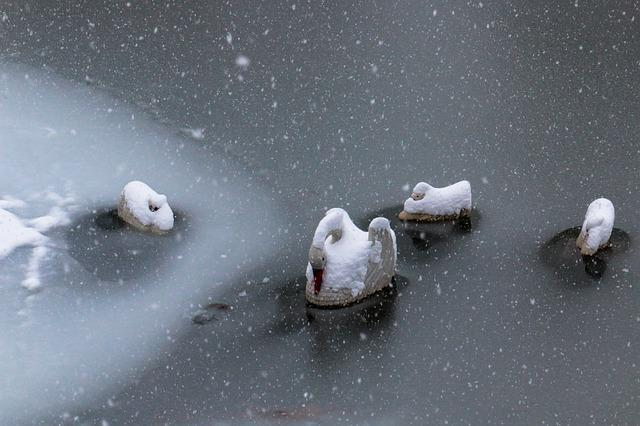Snow, Winter, Water, Cold, Ice, Nature, Outdoors, Wet