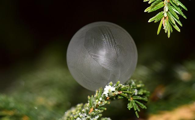 Bubble, Soap Bubble, Frozen, Winter, Cold, Ice
