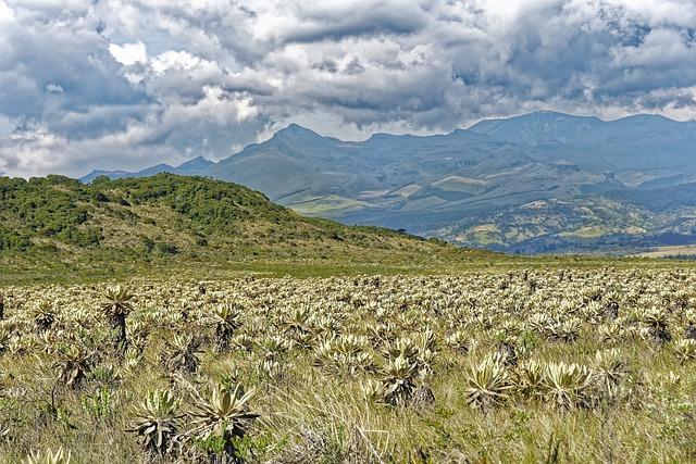 Colombia, Parque Nacional Natural De Puracé
