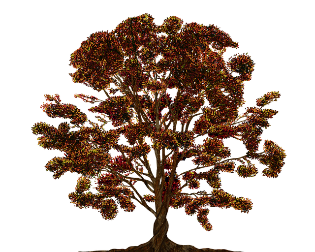 Tree, Vector, Ornament, Color, Family Tree, Texture