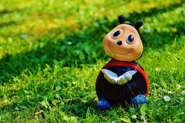 Ladybug, Fig, Funny, Lucky Ladybug, Color, Sweet