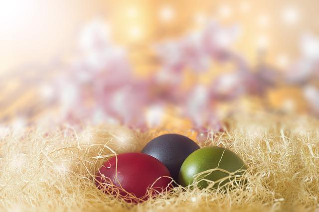 Desktop, Closeup, Nature, Celebration, Color, Season