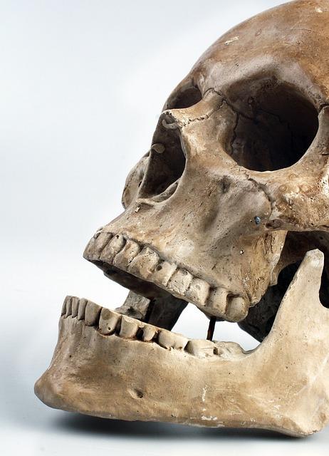 Skull, Color, Teeth