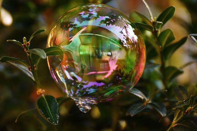 Soap Bubble, Colorful, Buxbaum, Buxus, Balls