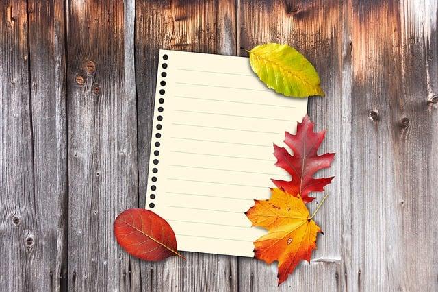 Autumn, Leaves, Colorful, Fall Foliage, Wood