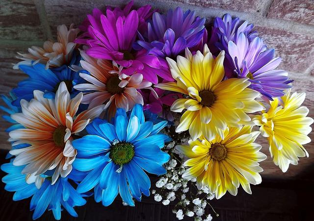 Plants, Flowers, Bouquet, Colorful Flowers, Nature