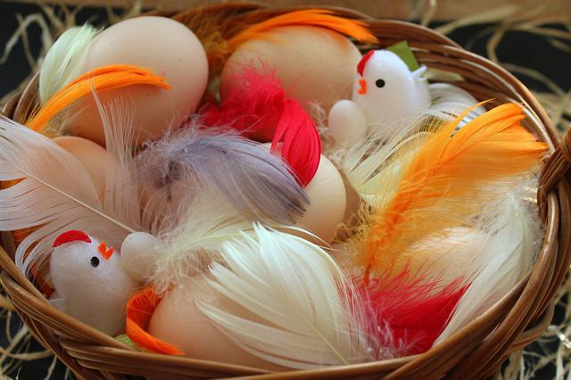 Easter, Birds, Nature, Pen, Eggs, Colorful, Spring
