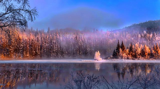Landscape, Nature, Colors, Colorful, Trees, Water