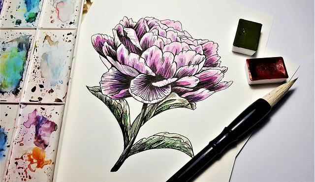 Painting, Drawing, Art, Flower, Pivonka, Brush, Colors