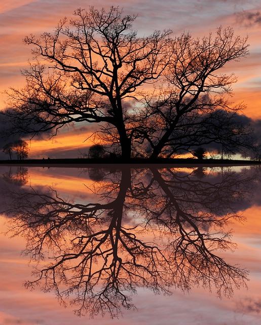 Aurora, Sunset, Sun, Landscape, Twilight, Colors, Light