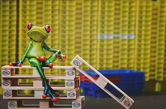 Frog, Company, Euro Pallets, Boxes, Sit, Pallets, Funny