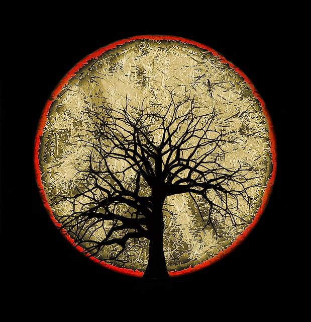 Composing, Tree, Fantasy