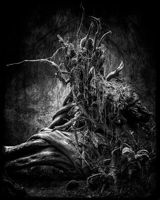 Nature, Tree Trunk, Composite