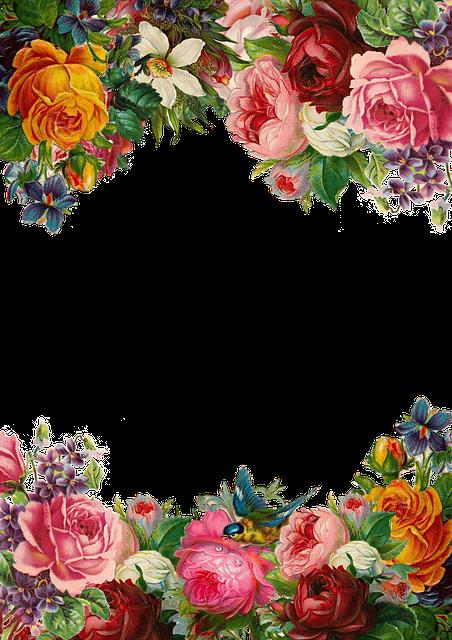Flower, Rose, Frame, Collection, Vintage, Composition