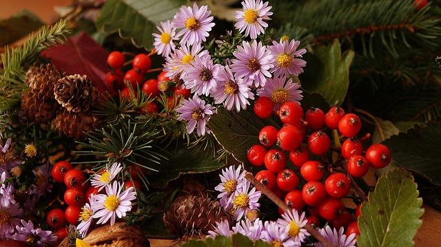 Nature, Plants, Composition, Flowers, Rowan, Cones
