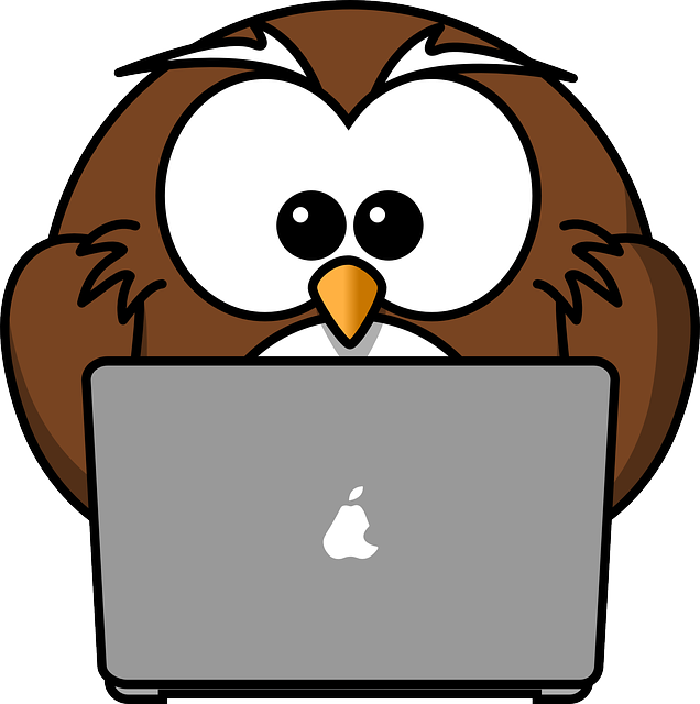 Owl, Animal, Bird, Computer, Funny, Laptop, Notebook