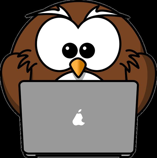 Owl, Animal, Bird, Computer, Funny, Laptop, Notebook