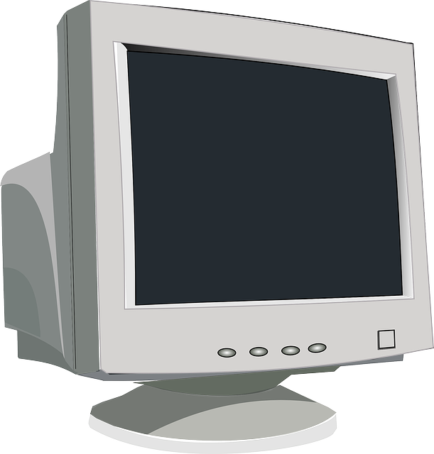 Monitor, Computer, Screen, Video, Tube, Peripheral