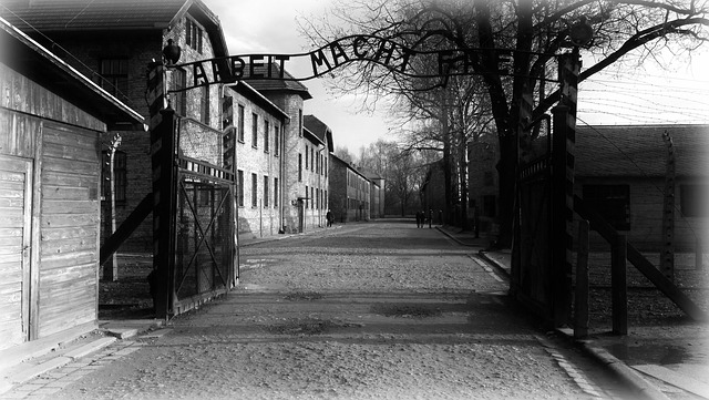 Auschwitz, History, The Museum, Concentration Camp