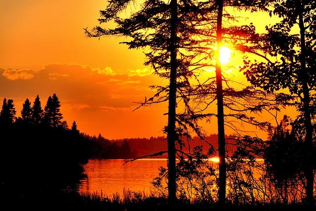 Landscape, Nature, Sky, Sunset, Trees, Coniferous