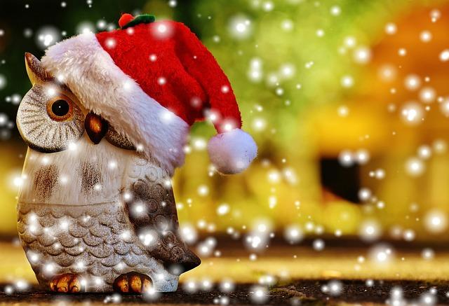 Christmas, Owl, Santa Hat, Snow, Contemplative, Figure