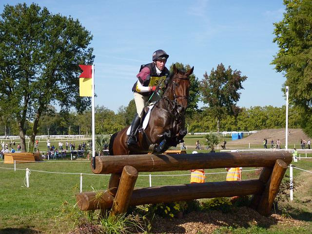 Horse, Eventing, Cross, Horseback Riding, Contest