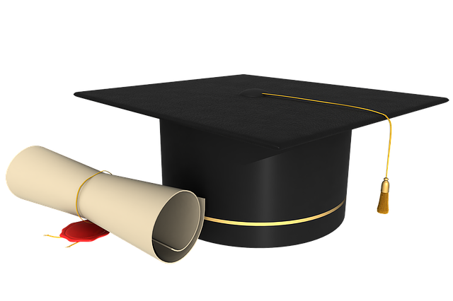 Diploma, Graduation, Contract, Rolled Up, Seal, Stamp