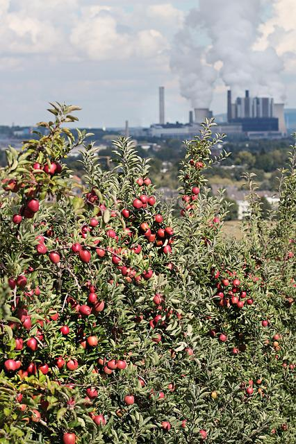 Apple, Power Plant, Coal Fired Power Plant, Contrast