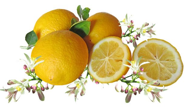 Lemons, Citrus, Fruit, Blossom, Cooking, Healthy