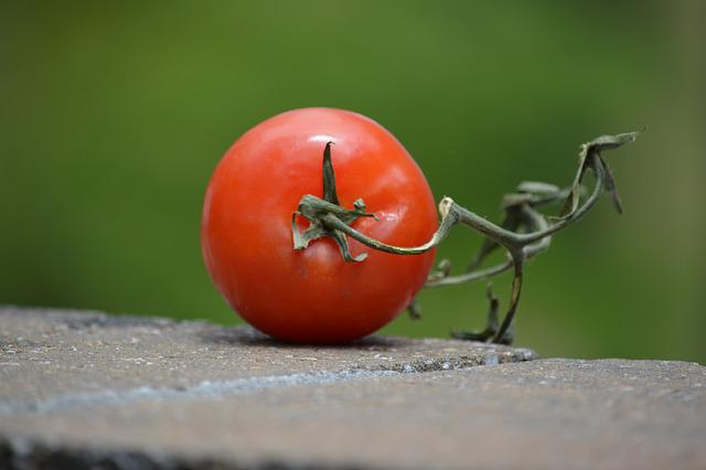 Tomato, Food, Cookout