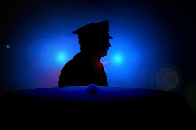 Blue Light, Siren, Police, Officer, Cop, Security