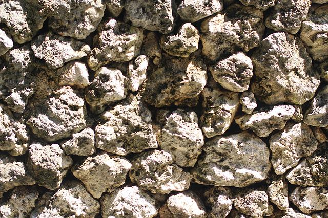 Material, Stone Wall, Coral, Texture, Background