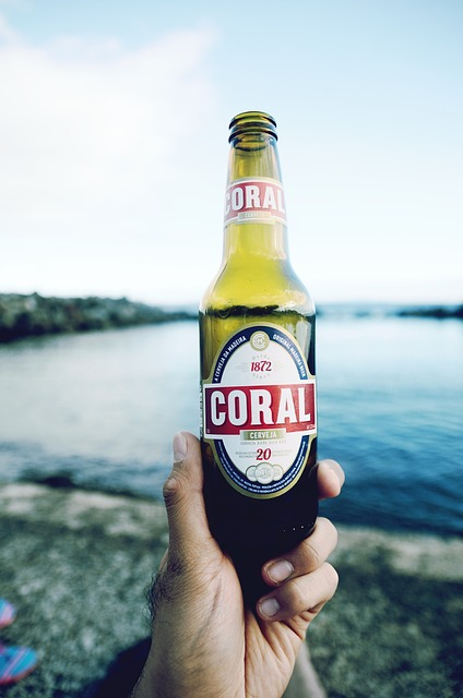 Drinks, Beer, Cerveja, Coral, Water, People, Man, Hand