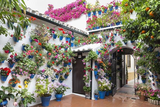 Patios De Córdoba, Flowerpot, Green, Cordoba, Spain