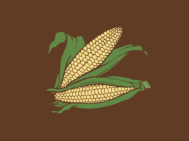 Corn, Corncob, Food, Maize, Cereal Grain, Sweet Corn
