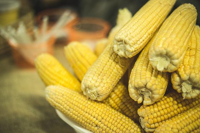 Corn, Jerk, Party, Festa Junina, Food, Tenon, Northeast