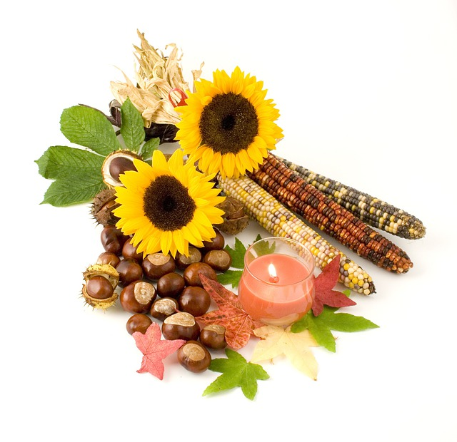 Sunflower, Indian, Corn, Candle, Leaves, Conkers