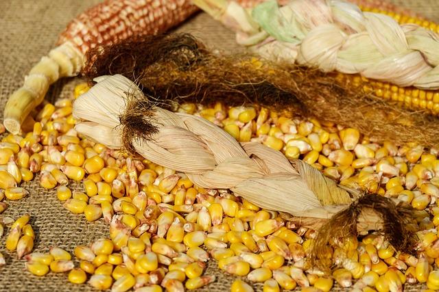 Corn, Yellow, Corn Leaves, Woven, Corn On The Cob Hair