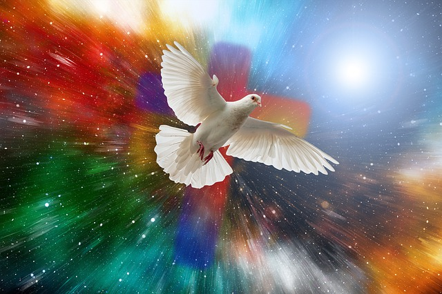 Dove, Universe, Cross, Explosion, Cosmos, Star, Faith