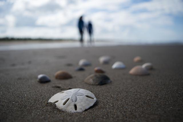 Beach, Sand, Costa, Sea, Nature