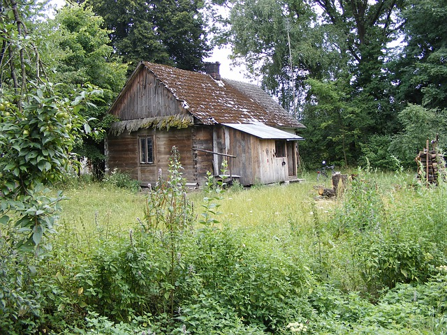 Cottage, The Roof Of The, Village, Mud, Poland, House