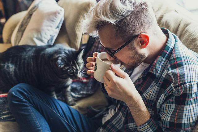 Adult, Sofa, Man, Cat, Pet, Couch, Coffee, Indoors