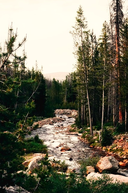 River, Stream, Landscape, Nature, Outdoors, Country