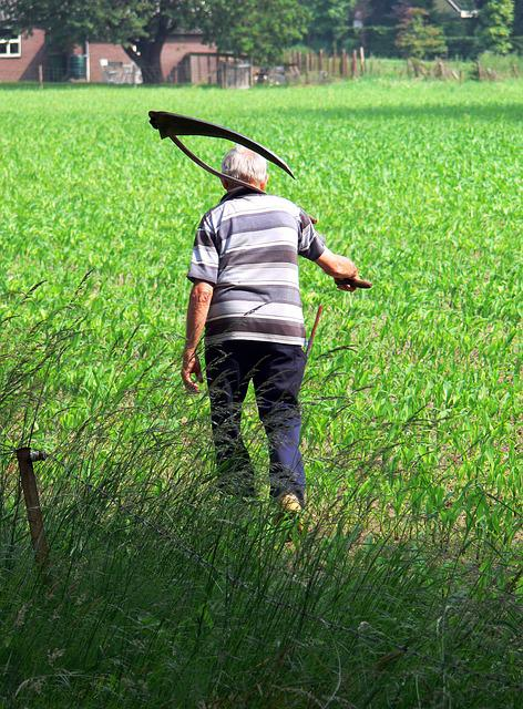Farmer, Scythe, Grass, Work, Country, Worker