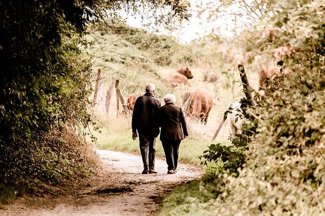 Elderly, Couple, Walking, Trail, Countryside, Rural