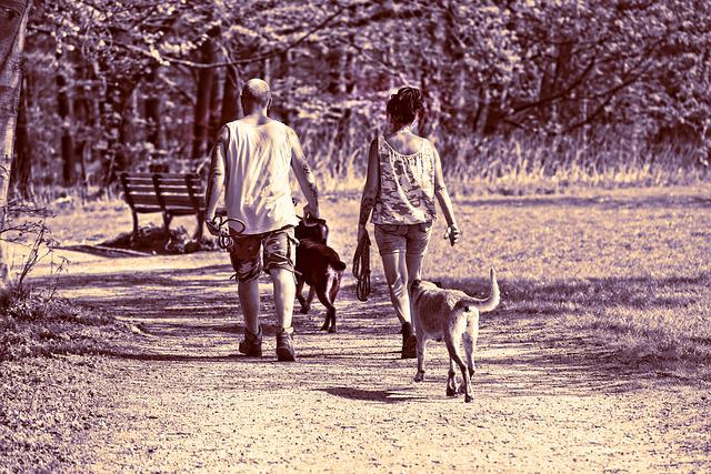 People, Man, Woman, Two, Together, Couple, Dog